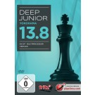 Deep Junior 13.8 Chess Playing Software Program