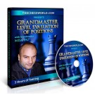 E-DVD Grandmaster Level Evaluation of Positions with GM Misa Pap